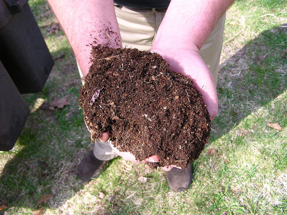 Aged horse manure add organic composition to gardens.
